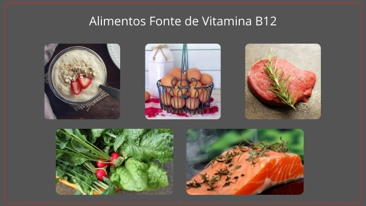 Alimentos Fonte de Vitamina B12