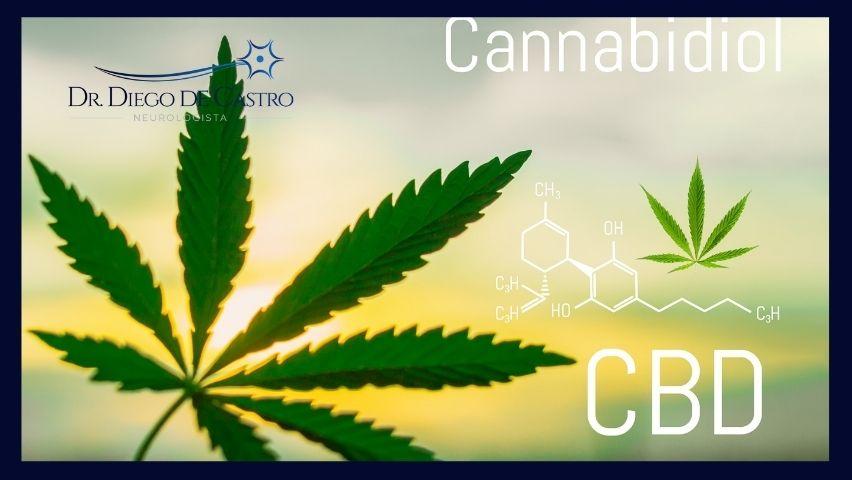 Interações do Sistema Endocanabinoide