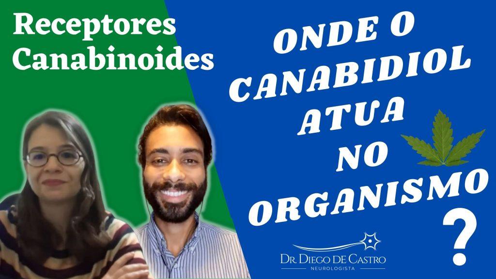 Receptores Canabinoides - Onde o Canabidiol Atua no Organismo?